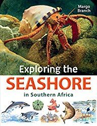 Buy Exploring the Seashore in Southern Africa by Margo Branch and Read this Book on Kobo's Free Apps. Discover Kobo's Vast Collection of Ebooks and Audiobooks Today - Over 4 Million Titles!