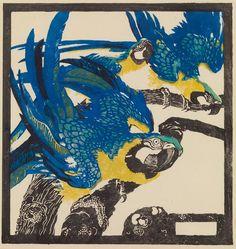 jungnickel · parrots