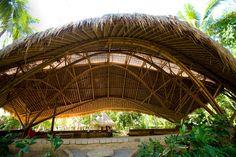"""""""Escola mais verde do mundo"""" chama atenção em ilha da Indonésia - Instituto Ecoação"""