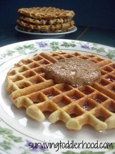 GAPS Coconut Waffles {Grain free, Gluten free, Dairy free, Sugar Free, Nut free, Paleo, Trim Healthy Mama- S }