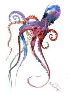 Afbeeldingsresultaat voor octopus