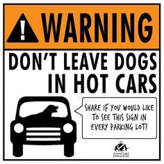 If you love your dog you won't leave them in a hot car.