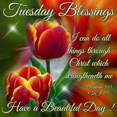 Tuesday Blessings!Philippians 4:13Have a Beautiful Day!!