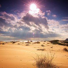 Arenales del sol Elche