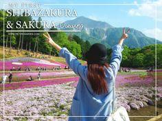 SPRING HIGHLIGHT : MY FIRST SAKURA サクラ AND SHIBAZAKURA 芝桜 VIEWING IN JAPAN : http://www.petitediaries.com/2017/06/spring-highlight-my-first-sakura-and.html - #japan #saitama #chichibu #hitsujiyama #mossphlox