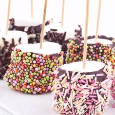 A chocolate dipped marshmallow recipe that is easy and can use sprinkles or chopped nuts.. Festive Chocolate Dipped Marshmallows Recipe from Grandmothers Kitchen.