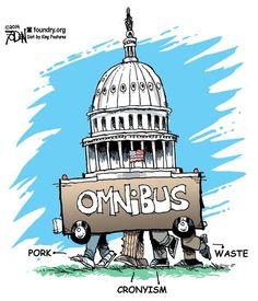 In the Omnibus: Government Failures Congress Wants You to Fund