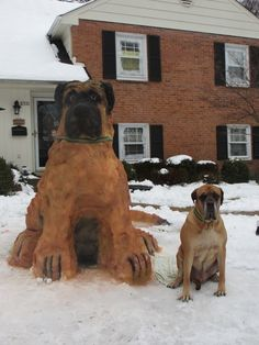 It can get so cold and lonely in winter that some people decided to make pet snow sculpture copies of their furry friends to keep them company! Some of these snow sculptures are perfect copies of the pets they were modeled after. Snowmen Pictures, Animal Pictures, Funny Pictures, Random Pictures, Funny Dogs, Funny Animals, Cute Animals, Big Dogs, Dogs And Puppies