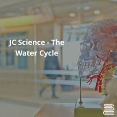 JUNIOR CERT SCIENCE - THE WATER CYCLE - 1Heat from the sun causes water to evaporate from seas. 2As water vapour rises it cools. Condensation produces clouds of tiny droplets of water. 3Cloud rises and further cooling occurs. Drops of water become heavier and fall as rain. 4Water collects in streams and rivers 5Rivers flow to the sea; they dissolve substances from rocks and receive sewage and industrial waste. 6Some water is diverted to reservoirs. 7The water is purified in water treatment…