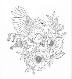 Nature Coloring Pages. Of Nature Adult Coloring Book Pg Color Pages Kenmore Washing Machine Water Inlet Valve Smells Front Load Washer Mold Agitator Vs Impeller Speed Queen Lg Leaking Deodorize Vinegar Adult Coloring Pages, Coloring Pages Nature, Barbie Coloring Pages, Spring Coloring Pages, Fairy Coloring, Flower Coloring Pages, Mandala Coloring Pages, Animal Coloring Pages, Printable Coloring Pages