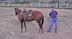 Country Music Lyrics - Quotes - Songs  - Cowboy Teaches Us How To Mount A Horse, But Something Goes Hysterically Wrong! - Youtube Music Videos http://countryrebel.com/blogs/videos/cowboy-teaches-us-how-not-to-mount-a-horse