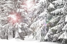 'WINTER LIGHT' von photofiction bei artflakes.com als Poster oder Kunstdruck $24.96