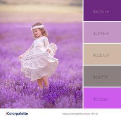 Color Palette Ideas from Lavender Flower Pink Image Pink Images, Flower Images, Lavender Color, Lavender Flowers, Color Combinations, Color Schemes, Yarn Colors, Colours, Purple Color Palettes