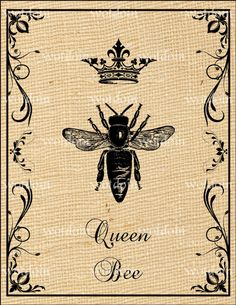 Queen Bee Digital Collage Image Transfer For by debsvintageprints, $1.95