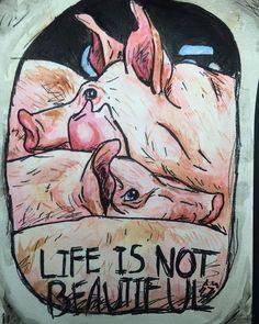 No, it's not.  :'(  Go #vegan