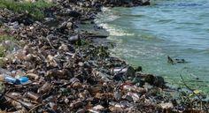 ¿Qué pasa por la contaminación del agua? | Segundo Enfoque
