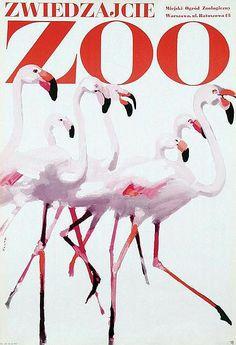 Waldemar Swierzy - Zwiedzajcie Zoo, flamingo's