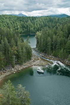 squirel cove - Google Search
