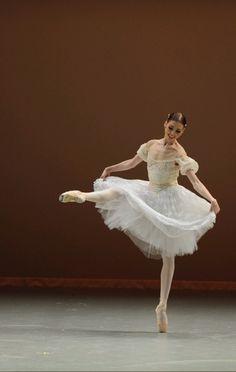 Sarasota Ballet Director Iain Webb announces the Dance - The Next Generation Bridgett Zehr Scholarship Fund. Ballet Images, Ballet Photos, Ballet Costumes, Dance Costumes, Ballet Russe, Ballet Photography, Learn To Dance, Tiny Dancer, Ballet Beautiful