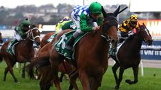 Gear change for Moonlight Maid ahead of Oaks target Rss Feed, Earmuffs, Business News, Peaches, Moonlight, Maid, Target, Racing, Change