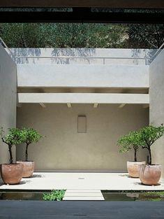 minimalist inner courtyard garden