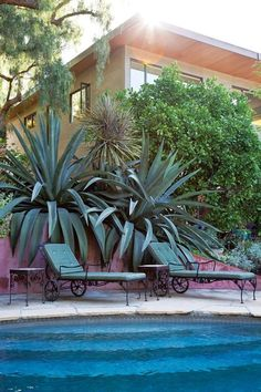 Oh so glamourous| Elysian Park home of Los Angeles garden designer Judy Kameon