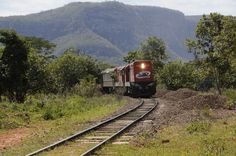 Trem do Pantanal (MS)