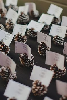 11 Evergreen Winter Wedding Decorations for That Chic Forest Feel - DIY escort card idea: Pinecones painted with snowy white tips - Wedding Table, Fall Wedding, Rustic Wedding, Wedding Reception, Trendy Wedding, Wedding Seating, Reception Ideas, Reception Food, Diy Christmas Wedding
