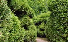 Woodland topiary, Les Jardins de Sericourt | Flickr - Photo Sharing!