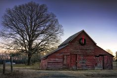 'tis The Season ! Photo by Robert Fawcett -- National Geographic Your Shot