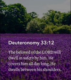Deuteronomy 33:12 This Scripture was shared with me today and is helping this uneasy feeling find rest