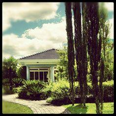 Exotical garden