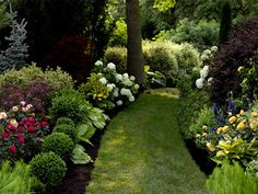 semi-shade garden ~ inspirational