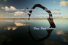 Sherrilyn Kenyon, Night Embrace
