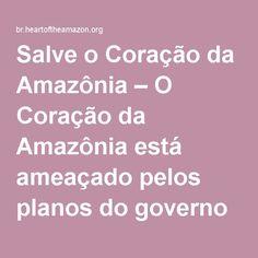 Salve o Coração da Amazônia – O Coração da Amazônia está ameaçado pelos planos do governo de construir uma enorme hidrelétrica no rio Tapajós. Um outro caminho é possível. Junte-se aos Munduruku nesta luta!