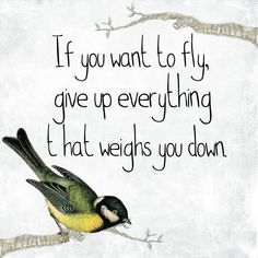 Forget the negatives and fly as high as you can with the power of happiness. :) Happiness is the truth as my relative says. Inspirational Quotes Freedom, Freedom Quotes, Motivational Quotes, Inspiring Quotes, Inspiring Message, Reality Quotes, Bird Quotes, Me Quotes, Bird Sayings