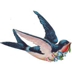 Sentimentalia - Victorian Stickers ~ Glansbilleder > Birds ~ Fugle ❤ liked on Polyvore