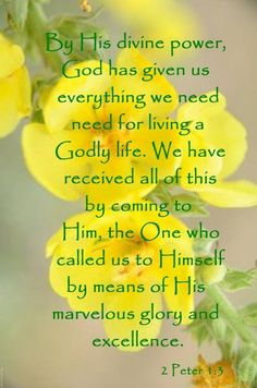 2 Peter (NLT) - By His divine power, God has given us everything we need for living a godly life. We have received all of this by coming to know Him, the one who called us to Himself by means of his marvelous glory and excellence. Thy Word, Word Of God, Bible Scriptures, Bible Quotes, Art Quotes, 2 Peter, Follow Jesus, Favorite Bible Verses, Praise The Lords