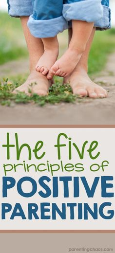 The foundation of positive parenting rests on five principles: attachment, respect, proactive parenting, empathetic leadership, and positive discipline. These five principles go hand in hand to both build a strong bond and to position you to be the effect