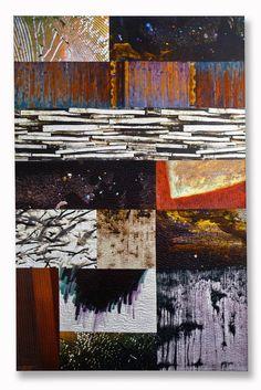 Michael James Studio Quilts Portfolio - Taxonomies cotton & dyes
