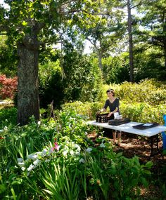 Planting asparagus and broccoli seedlings at Nip 'N Tuck organic farm on Martha's Vineyard, via Terra Trellis blog