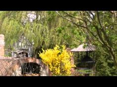 Landhaus Neu-Golm - Bad Saarow - Visit http://germanhotelstv.com/landhaus-neu-golm This hotel enjoys a quiet location in Brandenburg countryside 3 km from Bad Saarow. Landhaus Neu-Golm offers regional German cuisine in the restaurant or terrace.  The country-style rooms at Landhaus Neu-Golm are cosily furnished. -http://youtu.be/fdL4P4K4wJA