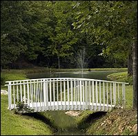 """The perfect spot to say """"I DO!"""" or to take wedding photos."""