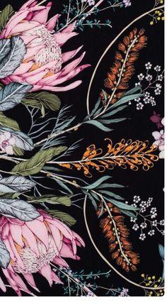 Botanical Art, Botanical Illustration, Illustration Art, Cute Wallpaper Backgrounds, Wallpapers, Protea Art, Floral Drawing, Painting Workshop, Arte Floral