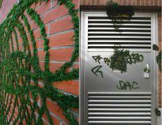 Witzige Idee - Gras für die Wand - Bildanleitung, text leider in spanisch