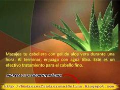 Remedios Caseros para el cabello Delgado - http://solucionparaelacne.org/blog/remedios-caseros-para-el-cabello-delgado/