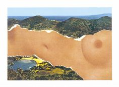 Ellsworth Kelly 'Saint Martin Landscape', 1979 © Ellsworth Kelly