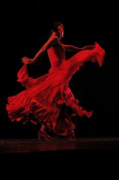 Il flamenco è un atto di vita by frescooooo