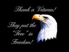 veterans day 2016 eagle flag