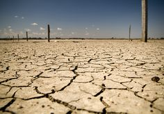 Get ready … El Niño is coming | The New Daily